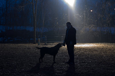 image for Dog Walking in the Dark